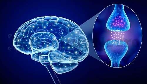 Сбои связи между клетками мозга служат причиной шума в ушах, головокружения