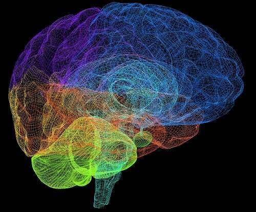 Препараты от шума в голове назначаются только после тщательного обследования