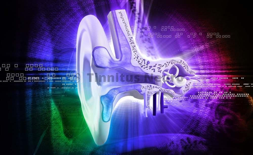 Для обследования органа слуха применяется аудиометрия