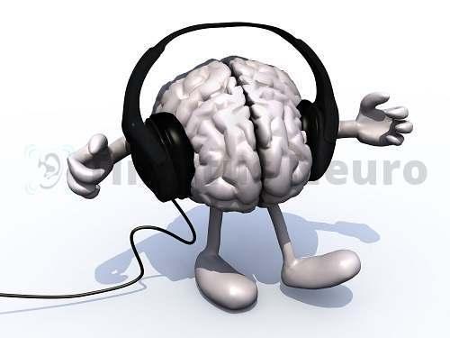 Мозг интерпретирует те звуки, которые транслирует в него ухо