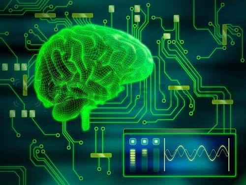 От электрической деятельности мозга зависит все