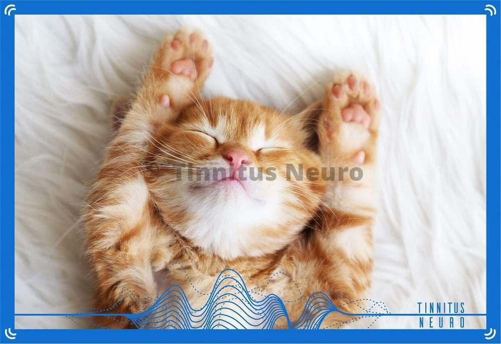 Сложно выспаться при тиннитусе